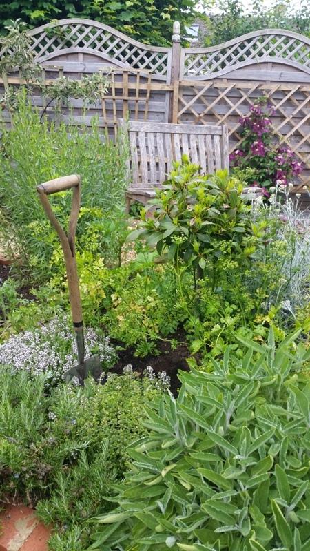 flourishing herbs