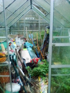 greenhouse before clearance